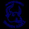 Mainostoimisto-Sininen-Harka-Logo-Blue-Official